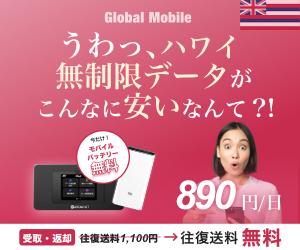 1日690円~【ハワイ専用レンタルWiFi】申込