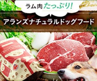 ドッグフード食べない107