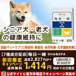 DHA×EPAでシニア犬をサポート【毎日一緒】