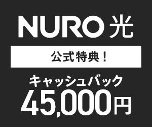 超高速インターネット 下り最大2Gbps NURO 光