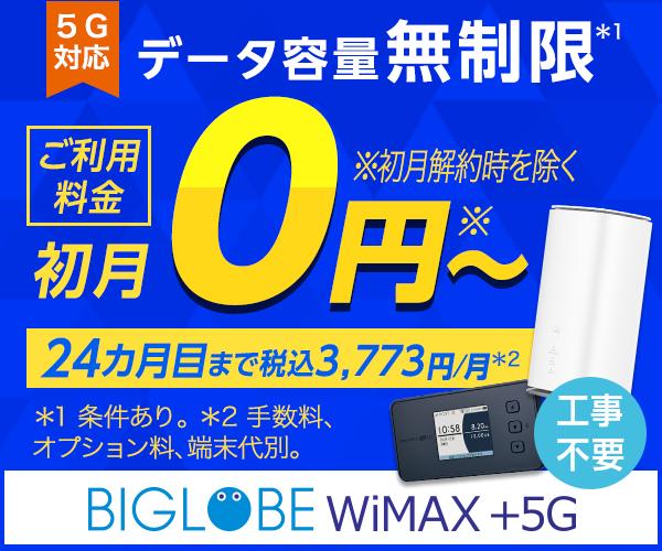 BIGLOBE WiMAX 2+なら「SIMのみ」でも契約可能!