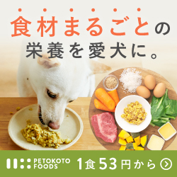 PETOKOTO FOODS