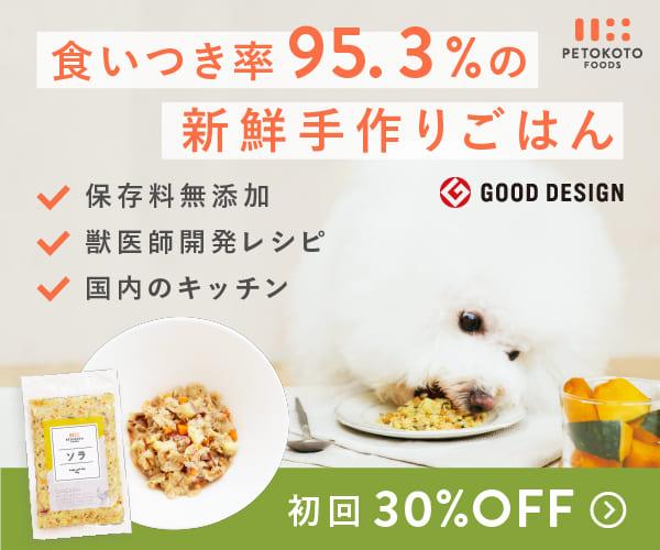 人間が食べても美味しい国産手作りドッグフード【PETOKOTO FOODS】利用モニター